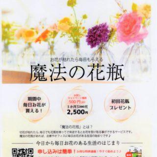 花兵衛:お花の月額制「魔法の花瓶」